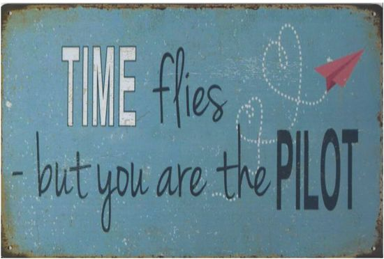Image result for time flies but you are the pilot